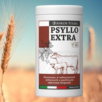 Psyllo Extra produkt przeciwbiegunkowy dla cieląt.