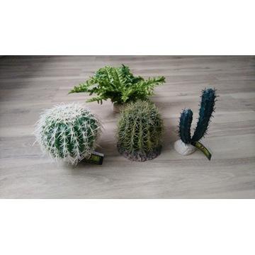 EXO TERRA sztuczna roślina kaktus, paproć - zestaw