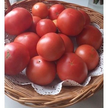Pomidory malinowe 6kg