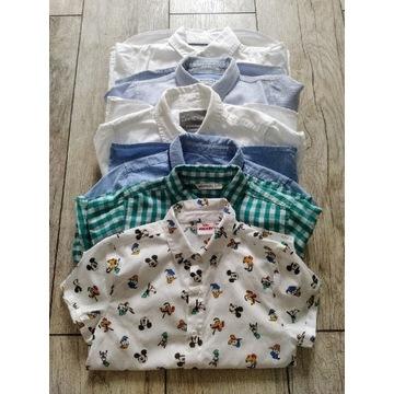 Zestaw 6 koszul 116-122