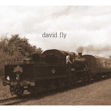 David Fly- The End