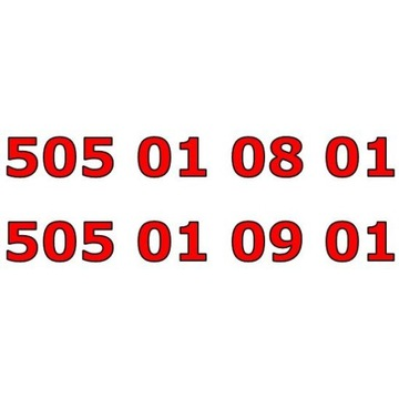 505 01 0x 01 ORANGE ZŁOTY NUMER STARTER PARA