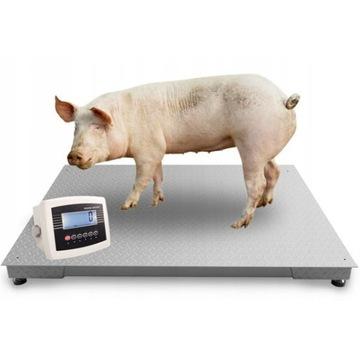 Waga Rolnicza do bydła żywca 0,8x1,5 świń 3t 5t
