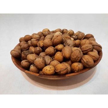Orzech Włoski 1 kg w łupinach