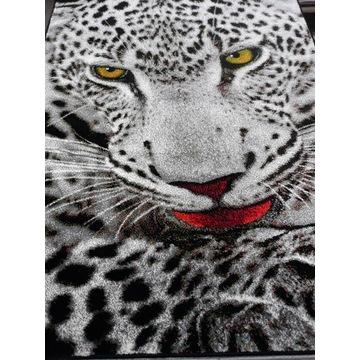 Dywan Kolibri 120x170 Tygrys
