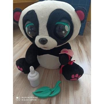 Yo yo Panda