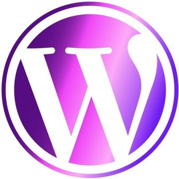 PROFESJONALNA STRONA INTERNETOWA WWW WORDPRESS