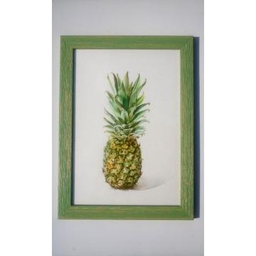 Obraz,akwarela,owoc