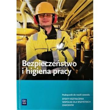Bezpieczeństwo i higiena pracy NPP WSiP