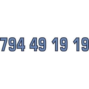 794 49 19 19 ZŁOTY NUMER STARTER PLAY