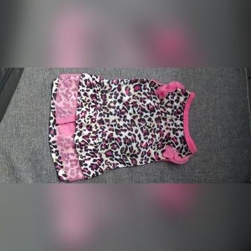 Sukienka dla psa rozmiar