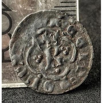 kwartnik ruski Kazimierz Wielki 1333-1370 Lwów