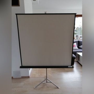 Ekran do projektora przenośny