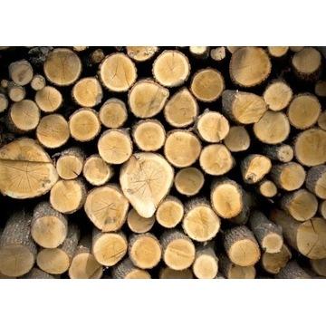 pocięte drewno opałowe ROKITKI