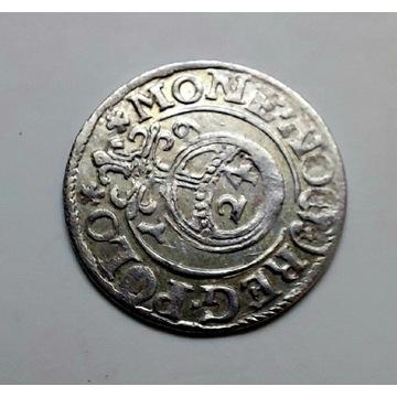 Zygmunt III Waza, Półtorak Bydgoszcz 1619r.PIĘKNY