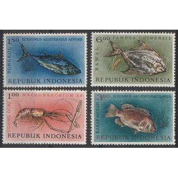 INDONEZJA - RYBY - CZYSTE **