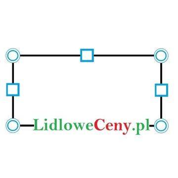 Dobrze rozpoznawalna domena LidloweCeny.pl