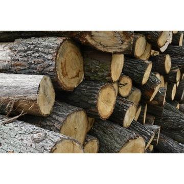 Drewno Bale Kłody Opał Belki