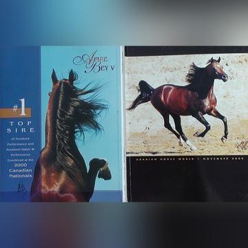 """ARABIAN HORSE WORLD"" 11/2000, konie arabskie"