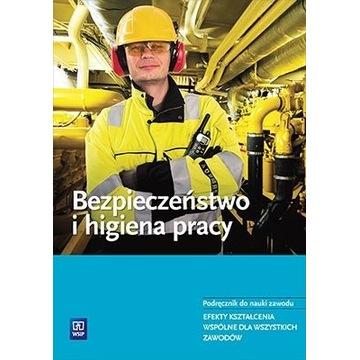 Bezpieczeństwo i higiena pracy WSIP