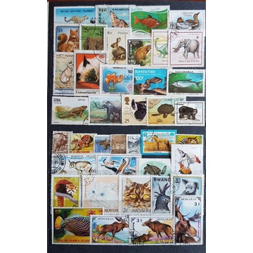 Zestaw znaczków kasowanych [ ], zwierzęta, świat.