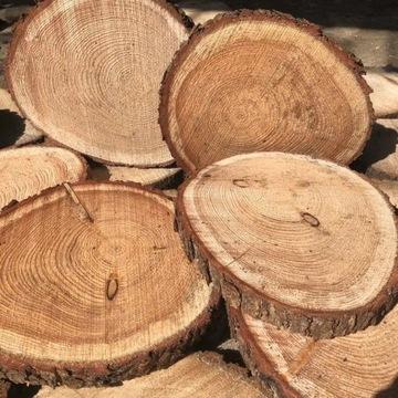Drewniane krążki plastry drewna 25-35 patera DĄB