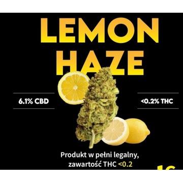 Susz CBD Lemon haze 1g