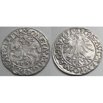 półgrosz, 1561, Wilno L/LITV -ładny-