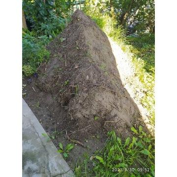 Oddam ziemię ogrodową za darmo, Oborniki Śląskie