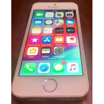 iPhone 5s 32GB biały-srebrny
