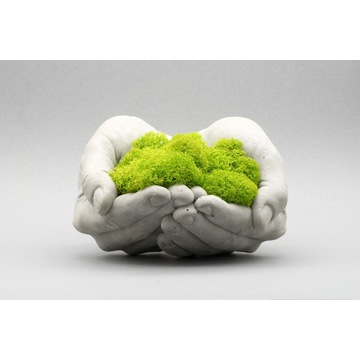 Idealny prezent / Betonowe ręce + mech chrobotek