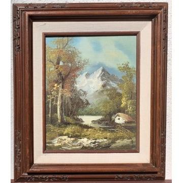 Pejzaż, góry, olej/płótno: 20x25cm, w ramie: 33x38