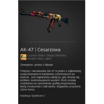 Skin cs go Ak-47 Cesarzowa FN