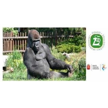 Bilety do zoo Warszawa - za pół ceny odsprzedam