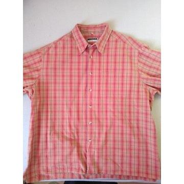 Pomarańczowa koszulka w kratkę z krótkim rękawem