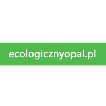 Domena internetowa ecologicznyopal.pl