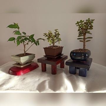 Ręcznie wykonany stolik pod bonsai/roślinę/rzeczy