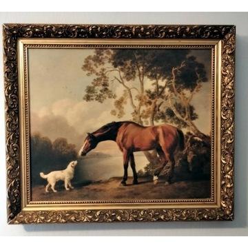 Gniady koń i biały pies Stubbs - 72 cm x 62 cm.