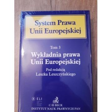 System Prawa Unii Europejskiej, Wykładnia Prawa UE