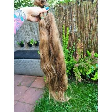 Włosy dziewicze blond #8 75cm 145gr