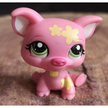 Littlest Pet Shop LPS unikat Świnka