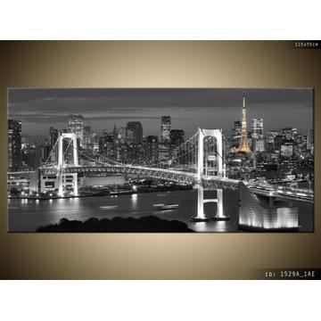 Obraz Most Tęczowy w Tokio nowy 115x55