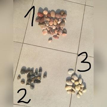 Kamienie do akwarium zestaw zestawy nietypowe Pń