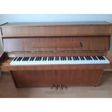 Pianino Calisia M105 transport w cenie