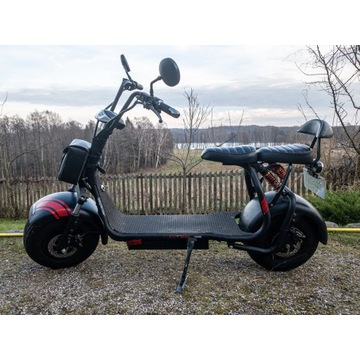 Elektryczny skuter/hulajnoga City Bike 1000