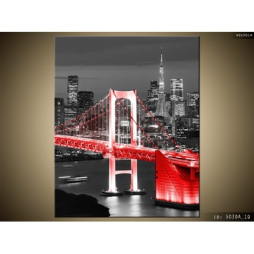 Obraz Tokyo most tęczowy w czerwieni 50x70
