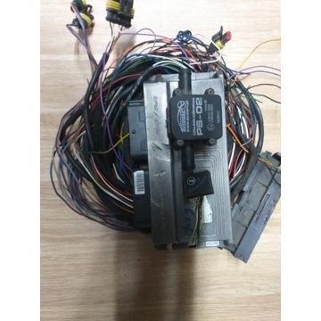 stag 300-6 elektronika