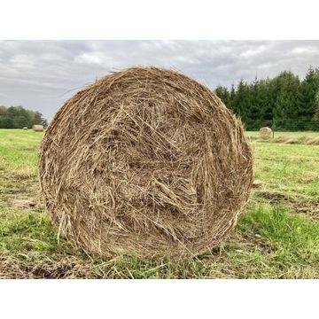 Siano ekologiczne łąkowe (baloty/bele 120) 23 szt.