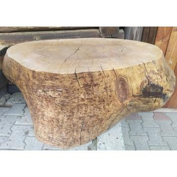 Pień drzewa. Ozdobny do ogrodu, do stolika.