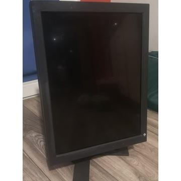 Monitor medyczny Eizo Radiforce GS310 rentgen
